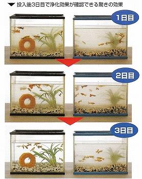 バイオブロック 納豆菌 水槽