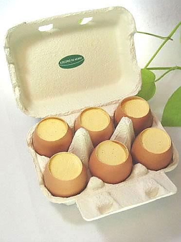卵 殻 プリン