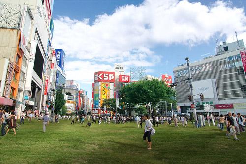 道路 新宿 芝生 緑地都市計画