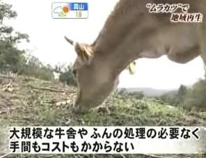 酪農 間伐 森 ランニングコスト