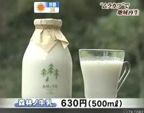 酪農 間伐 森林の牛乳