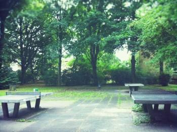 ドイツ 公園 卓球台 テーブル 奥がい